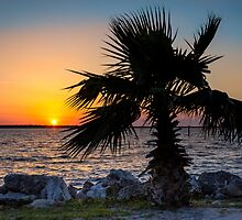 St. Joseph's Sound Sunset by Mikell Herrick