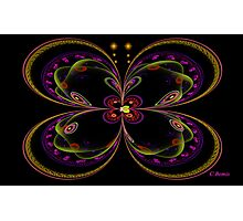 Butterfly Bliss Photographic Print