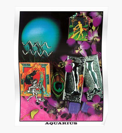 Astrology Series: Aquarius Poster