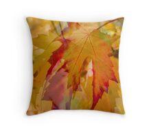 An Eye for Autumn II Throw Pillow