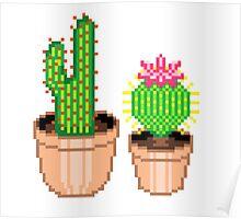 Pixel Cacti Poster