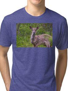 Deer 2 Tri-blend T-Shirt