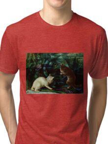 Curious Kittens Tri-blend T-Shirt