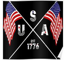 Vintage USA Est 1776 Flags Poster