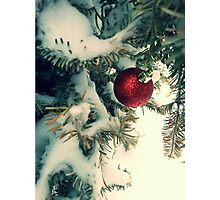 Red in White  Photographic Print