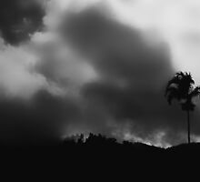 """""""The Storm is coming"""" in B&W by Imi Koetz"""