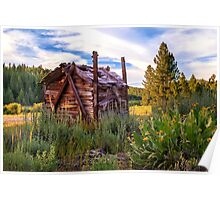 Old Lumber Mill Cabin Poster