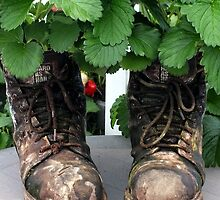 These Boots are made for... Strawberries by Ludwig Wagner
