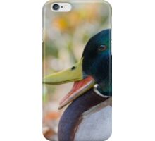 Mallard duck quacking iPhone Case/Skin