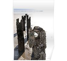 beach breakers and periwinkles Poster