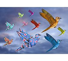 Origami Bird Dreamscape Photographic Print