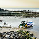 Fishing boat returning on beach, Cap Gris Nez, France by 7horses