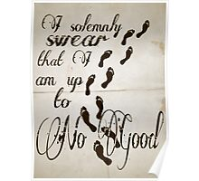 I Solomnly Swear in Paper  Poster