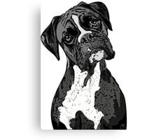 Black and White Boxer Art Canvas Print