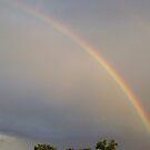 Rainbow by Grinch/R. Pross