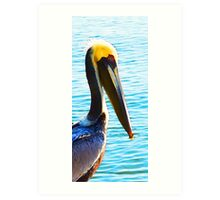 Big Bill - Pelican Art By Sharon Cummings Art Print