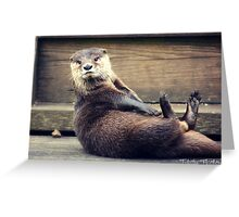 The Otter and His Pebble Greeting Card
