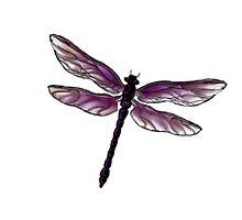 Dragonfly by serenada