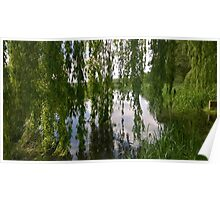 Willow norfolk river Poster