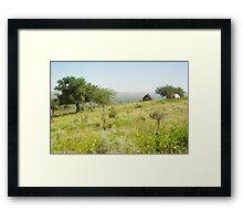 Green Desert Framed Print