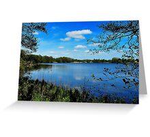 At the spring lake Greeting Card