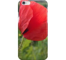 Poppy red over river iPhone Case/Skin