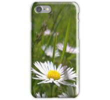 Daisies on river in norfolk iPhone Case/Skin