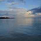 Old Fort Bay, Sunrise by serenada
