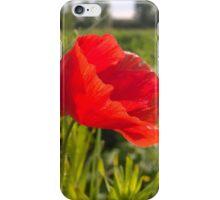 Poppy on river in norwich iPhone Case/Skin