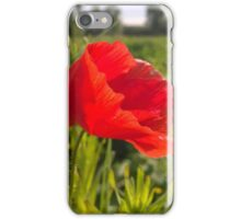 Poppy on river in norwich iPhone Case/Skin