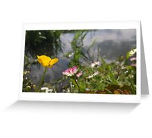 Buttercup and daisy river Greeting Card