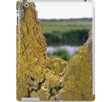 Lichen on tree near river iPad Case/Skin
