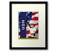 World Cup 2014 - USA Framed Print