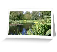 Lake midday norwich Greeting Card