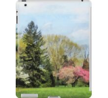 Spring Landscape iPad Case/Skin