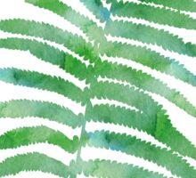 Watercolor Fern Leaves Sticker