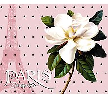 Sophisticated Parisian White Magnolias black polka dots, Eiffel Tower France Photographic Print