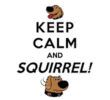 Keep Calm and SQUIRREL Photographic Print
