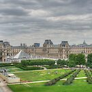 Panoramic view Musee du Louvre Paris by MaluC