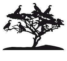 Tree savanna Vulture Africa by Style-O-Mat