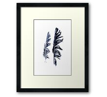 bird feathers in dark blue, illustration Framed Print