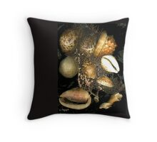 SHELLS #9 - 286 Throw Pillow