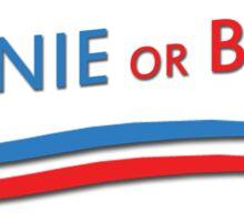 Bernie or Bust Sticker
