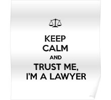 Trust Me I'm A Lawyer! Poster