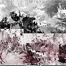 BWL 038 VALKYRIE by Joshua Bell