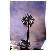 Palm Tree on Purple Poster
