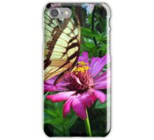 The Butterfly and The Zinnia iPhone Case/Skin