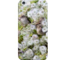 Contented sparrows iPhone Case/Skin