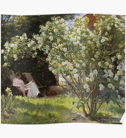 Peder Severin Kroyer - Roses. Garden landscape: garden view, Woman, blossom, nature, botanical park, floral flora, wonderful flowers, Rose, cute plant, garden, flower Poster