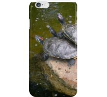 Cute Turtles on the Lookout! iPhone Case/Skin